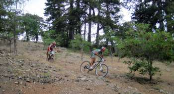 mtb champs troodos